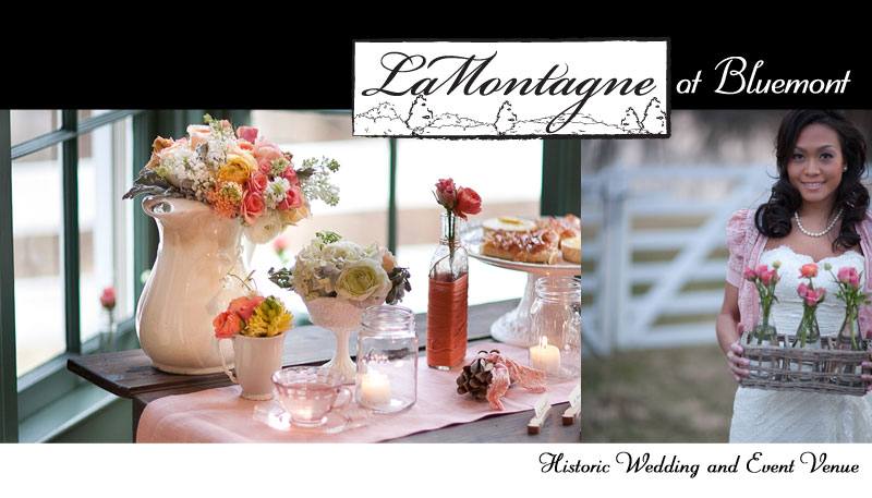 LaMontagne at Bluemont | Historic Wedding & Events Venue in Northern Virginia